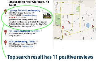 Google Places review
